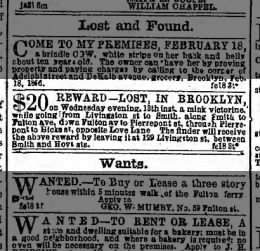 Lost on Love Lane 19 Feb 1856
