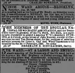 The Brooklyn Daily Eagle (Brooklyn, New York) 31 January 1859 page 3