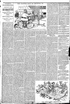 Logansport Pharos-Tribune from Logansport, Indiana on September 17, 1896 · Page 13