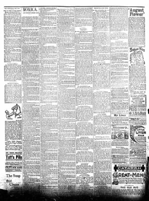 The Postville Review from Postville, Iowa on August 15, 1891 · Page 4