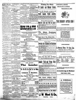 The Postville Review from Postville, Iowa on December 26, 1891 · Page 3
